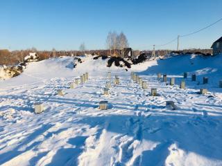 Svajnoe-pole-zimoj-2
