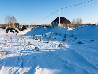 Svajnoe-pole-zimoj