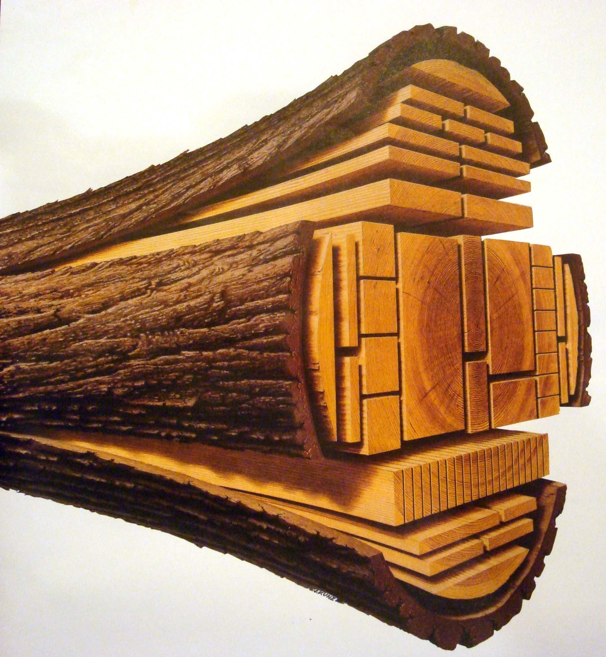 lumber_from_log_lg